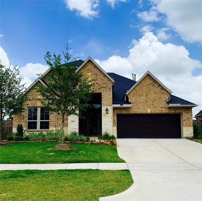 Fulshear Single Family Home For Sale: 3903 Desert Springs Lane