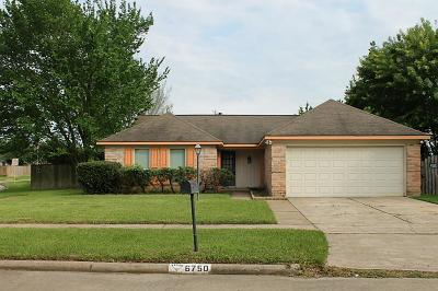 Katy Single Family Home For Sale: 6750 Prairie Village Drive