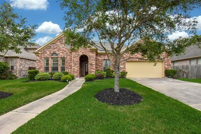 Pearland Single Family Home For Sale: 12911 Southern Ridge Drive