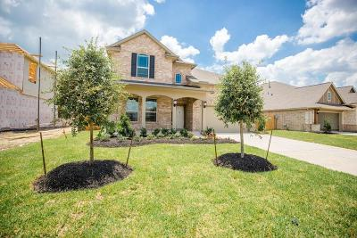 Rosenberg Single Family Home For Sale: 2407 Willow Falls Lane