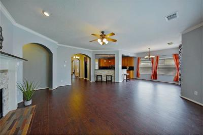 Sugar Land Single Family Home For Sale: 5006 Brush Field Lane