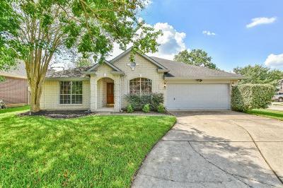 Pearland Single Family Home For Sale: 1114 E Hampton Drive