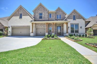 Galveston County, Harris County Single Family Home For Sale: 15215 Thompson Ridge Drive