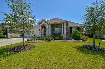Spring Single Family Home For Sale: 7503 Laguna Lake Drive