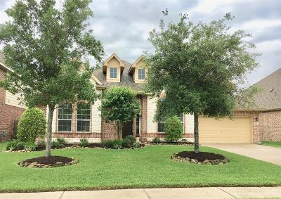 Friendswood Single Family Home For Sale: 1119 Sydney Lane
