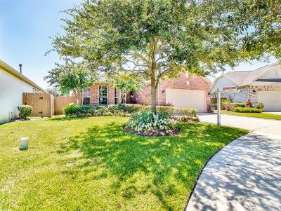 League City Single Family Home For Sale: 1645 Cecina Street