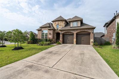 Friendswood Single Family Home For Sale: 1516 Frost Creek Lane
