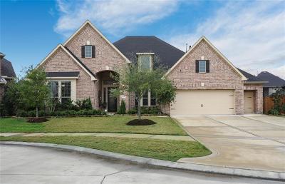 Houston Single Family Home For Sale: 5718 Crockett Creek Court
