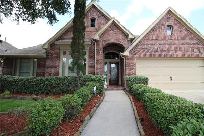 Shadow Creek Ranch Single Family Home For Sale: 2806 Green Mountain Drive