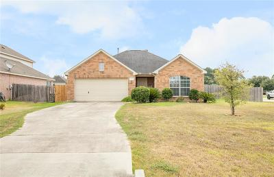 Magnolia Single Family Home For Sale: 33002 Kinley Ann Court
