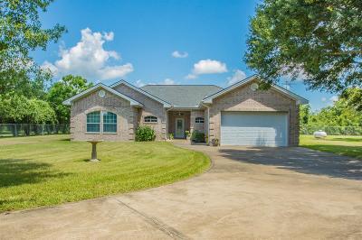 Brazoria Single Family Home For Sale: 3042 County Road 417