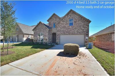 League City Single Family Home For Sale: 2623 Bethel Springs Lane