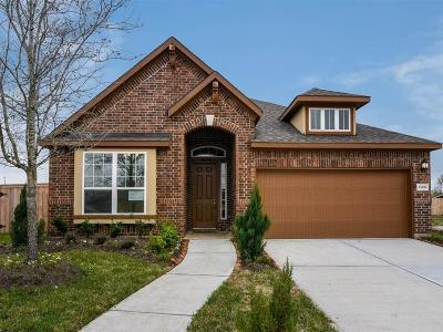 Pearland Single Family Home For Sale: 2306 Camellia Gables Lane