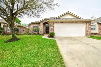 Tomball Single Family Home For Sale: 20115 Glacier Falls Drive