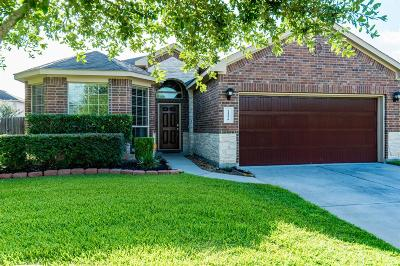 Porter Single Family Home For Sale: 21379 Village Crossing Lane