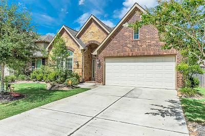 Katy Single Family Home For Sale: 10211 Pilibos Park Court