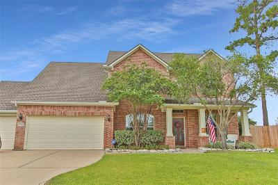 Tomball Single Family Home For Sale: 18742 Summercliff Lane