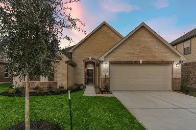 Single Family Home For Sale: 8723 Ute Creek Lane