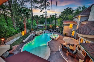 The Woodlands Single Family Home For Sale: 23 Twelve Pines Court