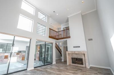 Houston Condo/Townhouse For Sale: 1605 Potomac Drive #D