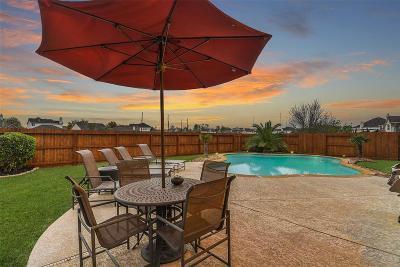 Missouri City Single Family Home For Sale: 5719 Buffalo Gap