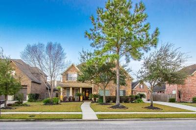 Houston Single Family Home For Sale: 13914 Southern Spring Lane