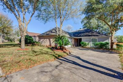 Houston Single Family Home For Sale: 4606 Sylvan Glen Drive