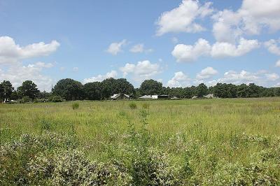 Tomball Farm & Ranch For Sale: Decker Prairie Rosehill