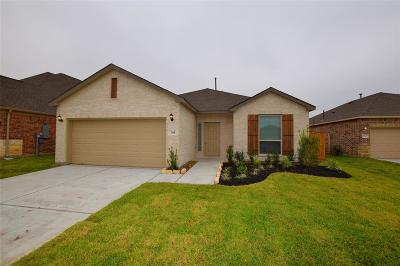 Texas City Single Family Home For Sale: 2118 White Cove Drive