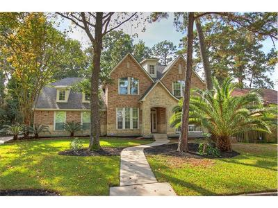 Montgomery Single Family Home For Sale: 3610 Brookhaven Drive