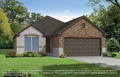 Houston Single Family Home For Sale: 1038 Carolina Wren Circle