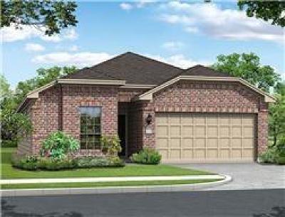 Houston Single Family Home For Sale: 12607 Silverlight Court