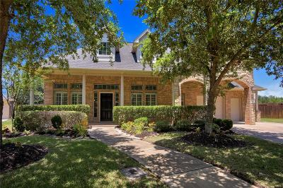 Single Family Home For Sale: 227 Terrace Creek Court