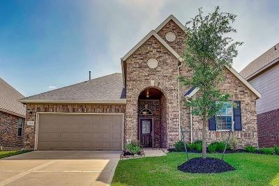Katy Single Family Home For Sale: 3306 Retama Falls Lane