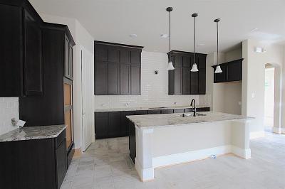 Webster Single Family Home For Sale: 526 Pedernales Street