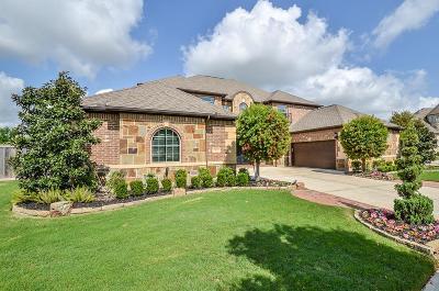 Sugar Land Single Family Home For Sale: 5031 Vista Blue Lane