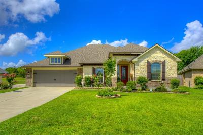 Montgomery Single Family Home For Sale: 144 Racetrack Lane