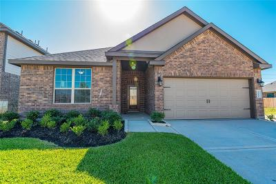 Katy Single Family Home For Sale: 3911 Prairie Landing Lane