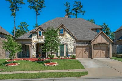 Conroe Single Family Home For Sale: 90 Chestnut Meadow Drive
