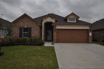League City Single Family Home For Sale: 1627 Analy Court