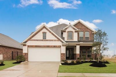 Katy Single Family Home For Sale: 24018 Cannon Anello Court