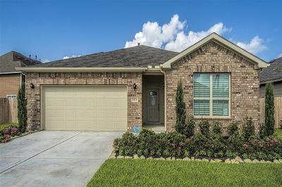 Katy Single Family Home For Sale: 2431 Seahorse Bend