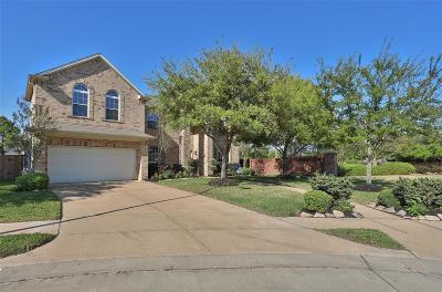 Katy Single Family Home For Sale: 8502 Rising Oak Lane