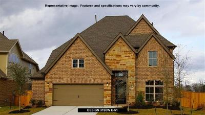 Pearland Single Family Home For Sale: 13320 Lazy River Lane