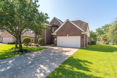 Pearland Single Family Home For Sale: 3218 River Birch Drive