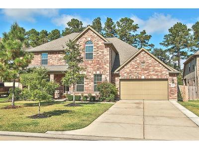 Porter Single Family Home For Sale: 24991 Stratton Meadows Drive