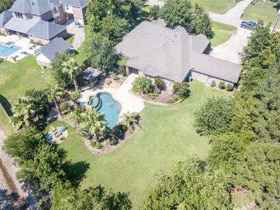 Conroe Single Family Home For Sale: 13244 Autumn Ash Drive