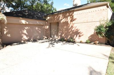 Houston Single Family Home For Sale: 2243 Briarwest Boulevard