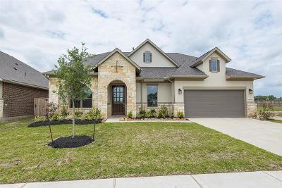 Tomball Single Family Home For Sale: 21703 Albertine Drive