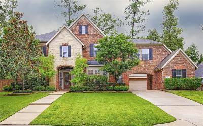 Conroe Single Family Home For Sale: 2117 Summit Mist Drive